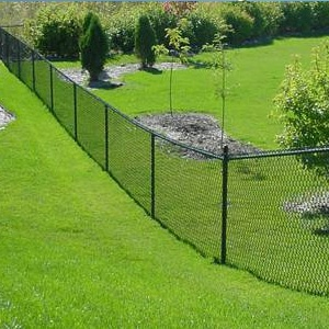 chain link fence along grassy area